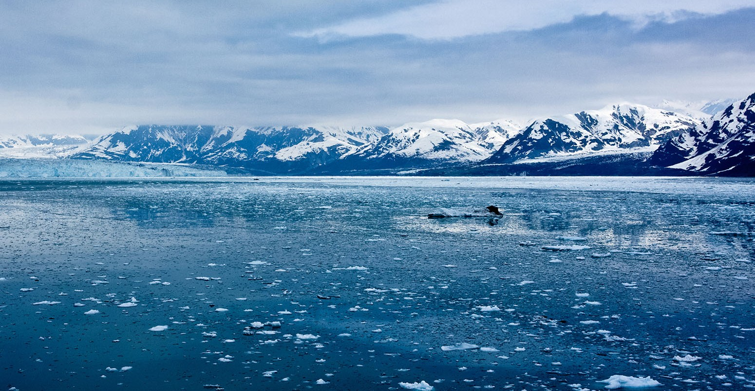 The Arctic is melting: Good news for Maritime Transports, bad news to the rest of the world.